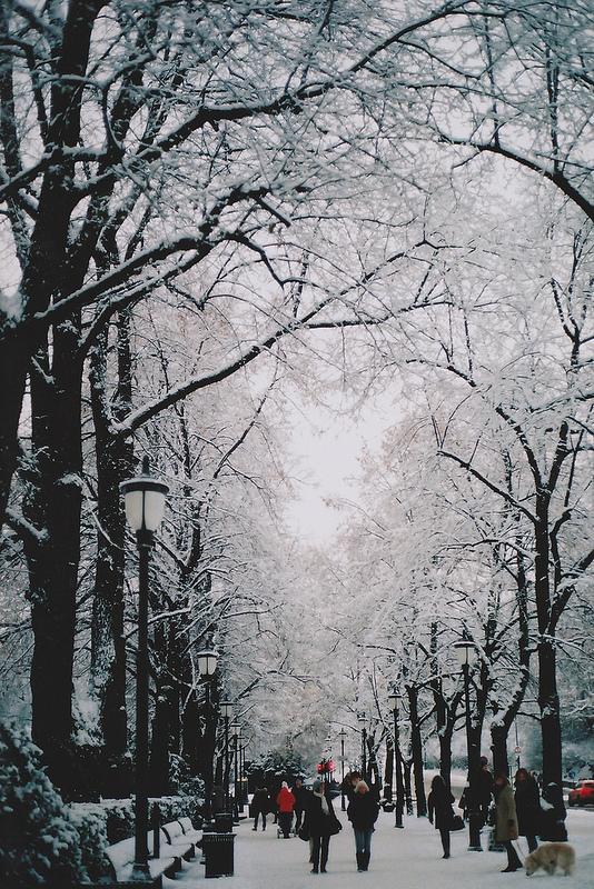 vinter-4