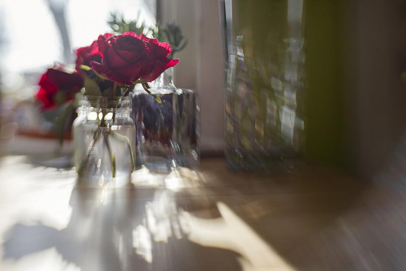 201201_Roses
