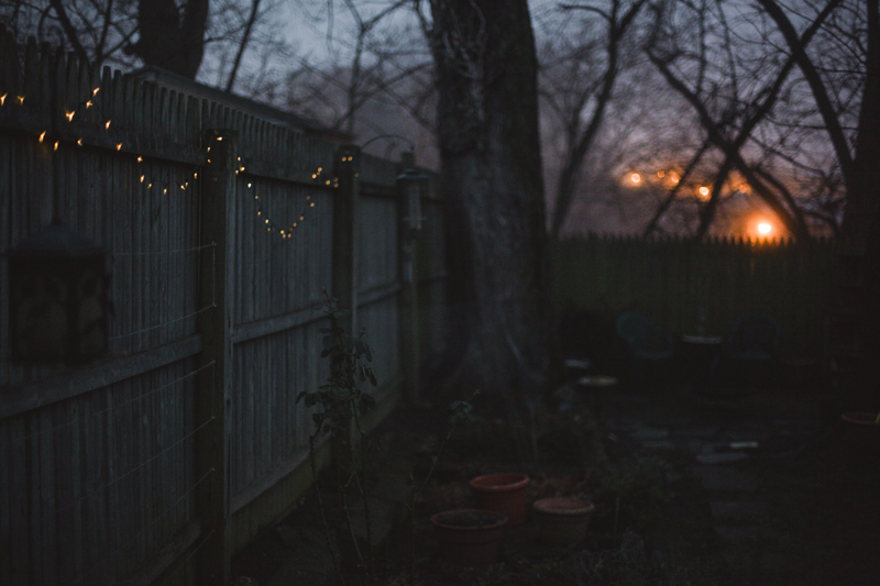 Twinkle lights strung along a fence in a city garden.
