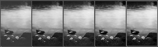 Kodak_PlusX125