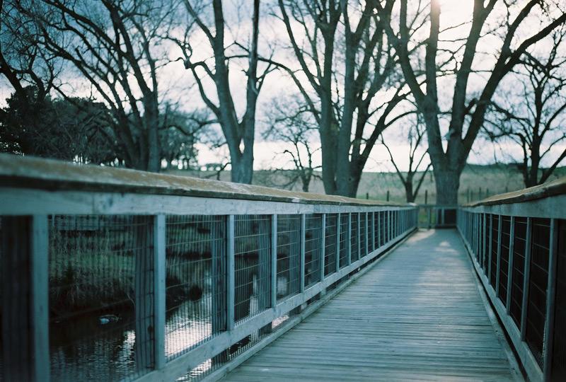 AE1_Agfa_Bridge_rs