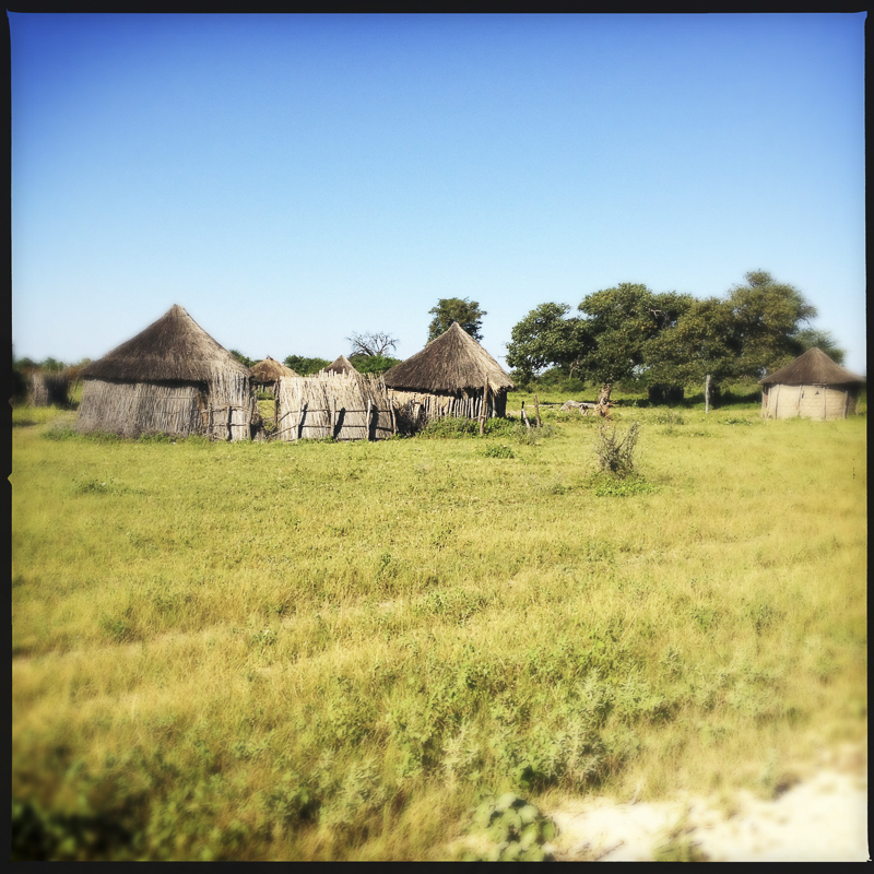 20120309_SouthernAfrica_567