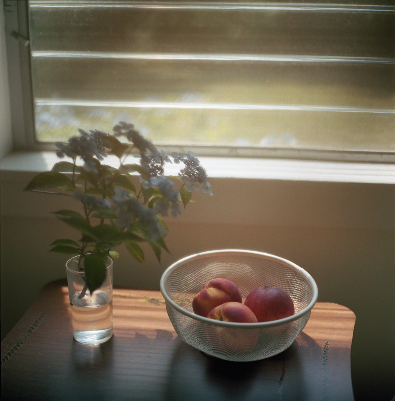 still life with hydrangeas and peaches
