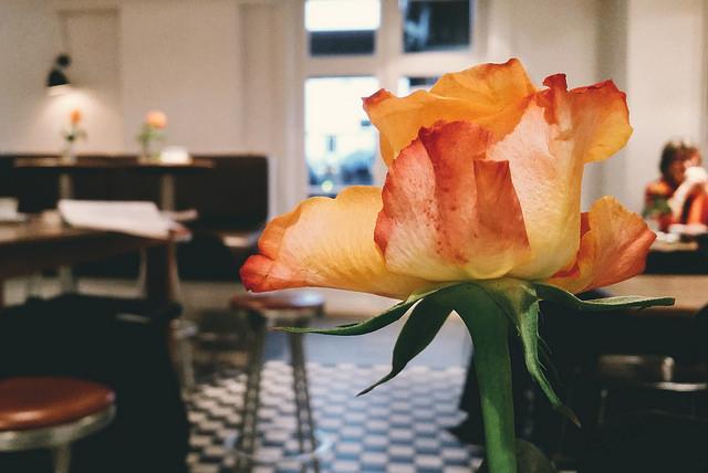 mobilenews-rosesandcoffee1